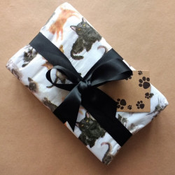 Cats and Kittens Pack